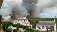 El dia 5 d'agost cap a les 14:15h. va entrar l'avis d'incendi forestal al poble de la Pobla de Montornés, poble veí de Bonastre. El gran massís forestal de la […]