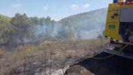 25 voluntaris de les ADF de Sant Martí, Torrelles, Castellví, Avinyonet, La Carrerada i la Federació d'ADF, amb una dotació de 11 vehicles, van participar en tasques d'extinció de l'incendi […]