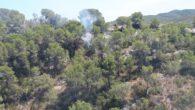 El dia 13 d'agost va aparèixer un foc forestal a Sant Pere de Ribes provocat per un llamp de la tempesta que va caure dies abans. La ràpida actuació dels […]