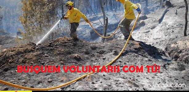 L'ADF Garraf busca nous voluntaris. Interessats contactar amb:  ADFGARRAF2013@gmail.com