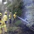 El passat diumenge dia 5 de juny cap a les 18:30 h. un altre incendi forestal es va declarar a la zona de la timba de Sant Sadurní d'Anoia. La […]