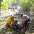 """Els dies 12 i 13 de novembre a l'espai anomenat """"el bosc i l'hort de les escoles"""" es va fer una reforestació amb plançons d'alzina amb un centenar de […]"""
