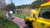 Plantada d'arbres, el dia 23 de març, amb alumnes de l'Institut Jacint Verdaguer de Sant Sadurní d'Anoia.