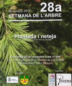 plantada st sadurni 26-11-17