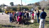 Els Alumnes de 2on de Secundària de l'escola Vedruna de Sant Sadurní van plantar un trentena d'arbres amb l'Ajuda de l'Ajuntament de Sant Sadurní i l'ADF local en la zona […]