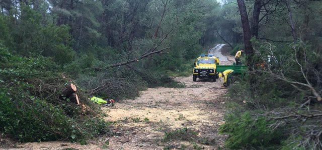 Una trentena de voluntaris de les Agrupacions de Defensa Forestal (ADF) del Penedès i Garraf han actuat durant el temporal que ha afectat les nostres comarques els dies 21 i […]