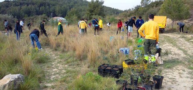 Uns 80 alumnes de l'Institut Milà i Fontanalsj han fet una plantada de més de 160 plançons de pins i alzines a la muntanya de St Jaume de Vilafranca amb […]