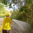 Actuació de remullar borrissol dels pollancres a Torrelavit la tarda del dia 16-5-18, per evitar incendis forestals.