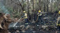 Abans d'arribar les plujes de la tarda del dissabte dia 31 de juliol van caure molts llamps, 3 dels quals van provocar incendis forestals. L'un va ser a El Venndrell, […]