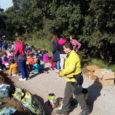 80 nenes i nens de l'escola de Sant Pere Molanta que durant un any any cuidat els seus plançons d'alzina a l'escola van anar d'excursió el passat 30 de novembre […]