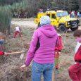 275 alumnes de les escoles de Sant Sadurní van participar en la plantada d'arbres de la 31a setmana de l'arbre que organitza cada any el grup ecologista local ADEMA amb […]
